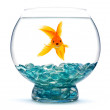 Royalty-Free Stock Photo: Goldfish