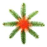 Snowflake made from Christmas tree branc — Stock Photo