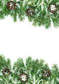 Kerstmis kader met sneeuw — Stockfoto