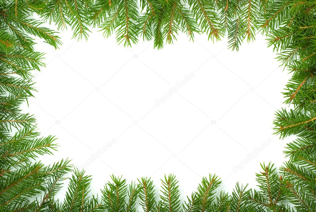 Christmas green framework isolated on white background  Stock Photo #1148402