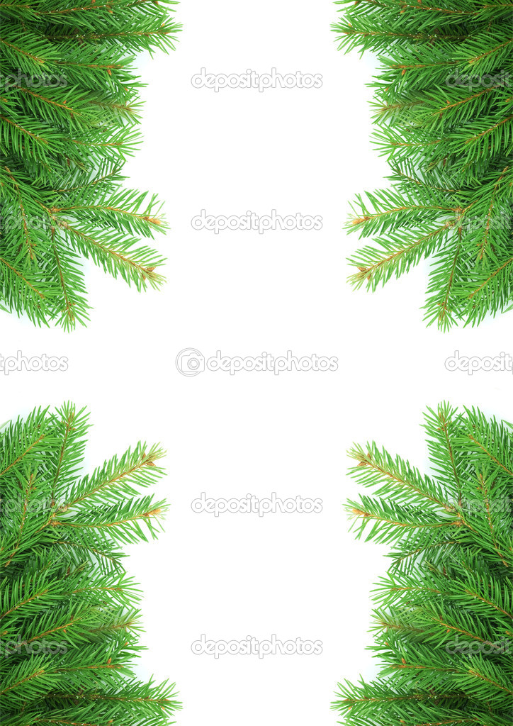 Christmas green framework isolated on white background  Stock Photo #1148478