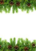 рождественская структура — Стоковое фото