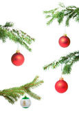 Branches with a Christmas toy — Stock Photo