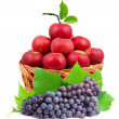 Colorful healthy fresh fruit - Stock Photo