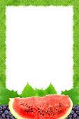 Watermelon and grape — Stock Photo