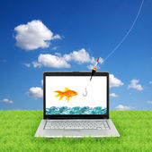 Goldfish in a laptop — ストック写真