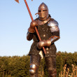 Medieval knight — Stock Photo #1643087