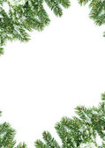 圣诞框架与雪 — 图库照片