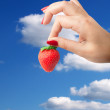 A strawberry in the hand — Stock Photo