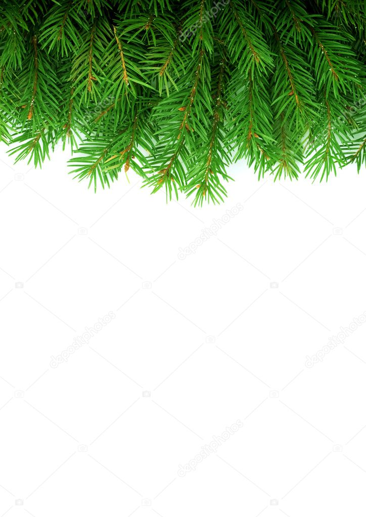 Christmas green framework isolated on white background — Stock Photo #1723085