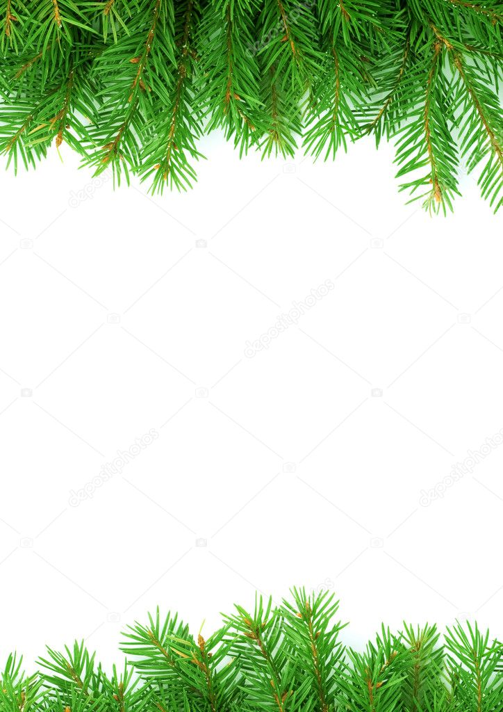 Christmas green framework isolated on white background — Stock Photo #1723113