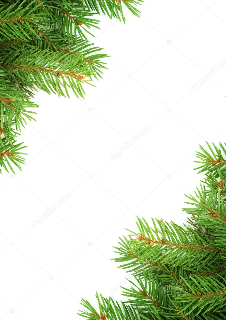 Christmas green framework isolated on green background — Stock Photo #1753025