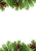 Kerstmis kader met sneeuw en kegels — Stockfoto