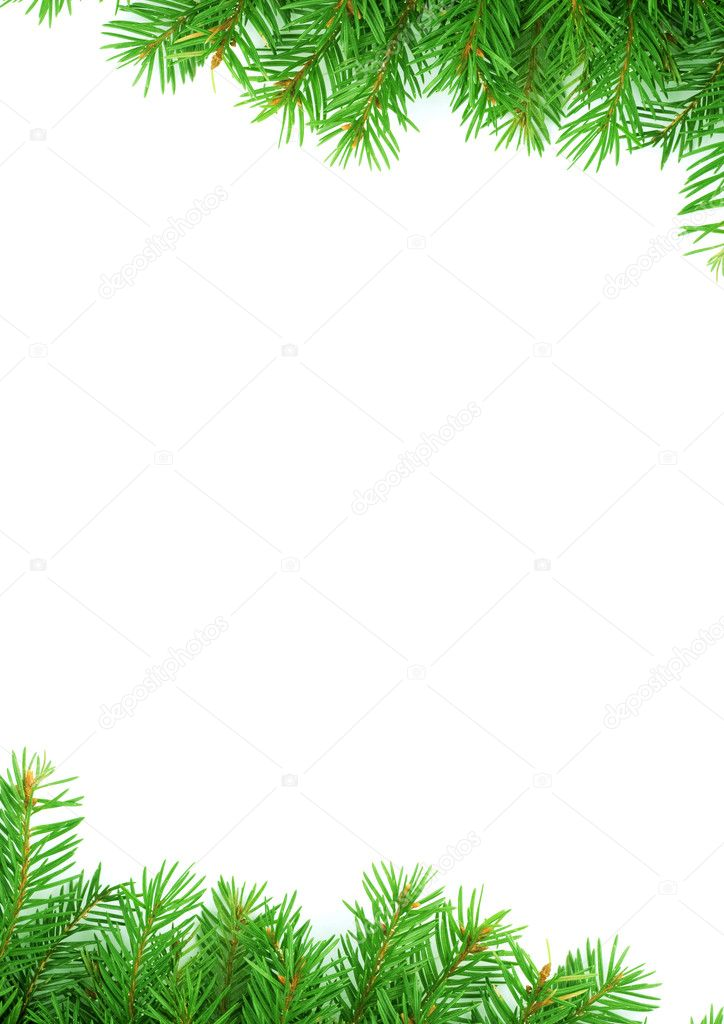 Christmas green  framework isolated on white background — Stock Photo #1765870