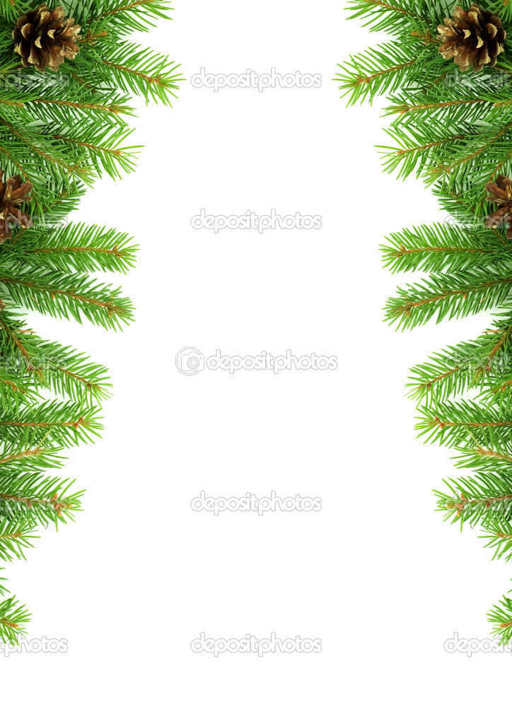 Christmas green  framework isolated on white background — Stock Photo #1766011