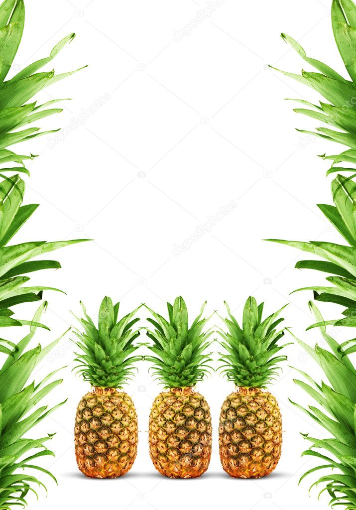 Ripe pineapple isolated on a white background  Photo #1945863