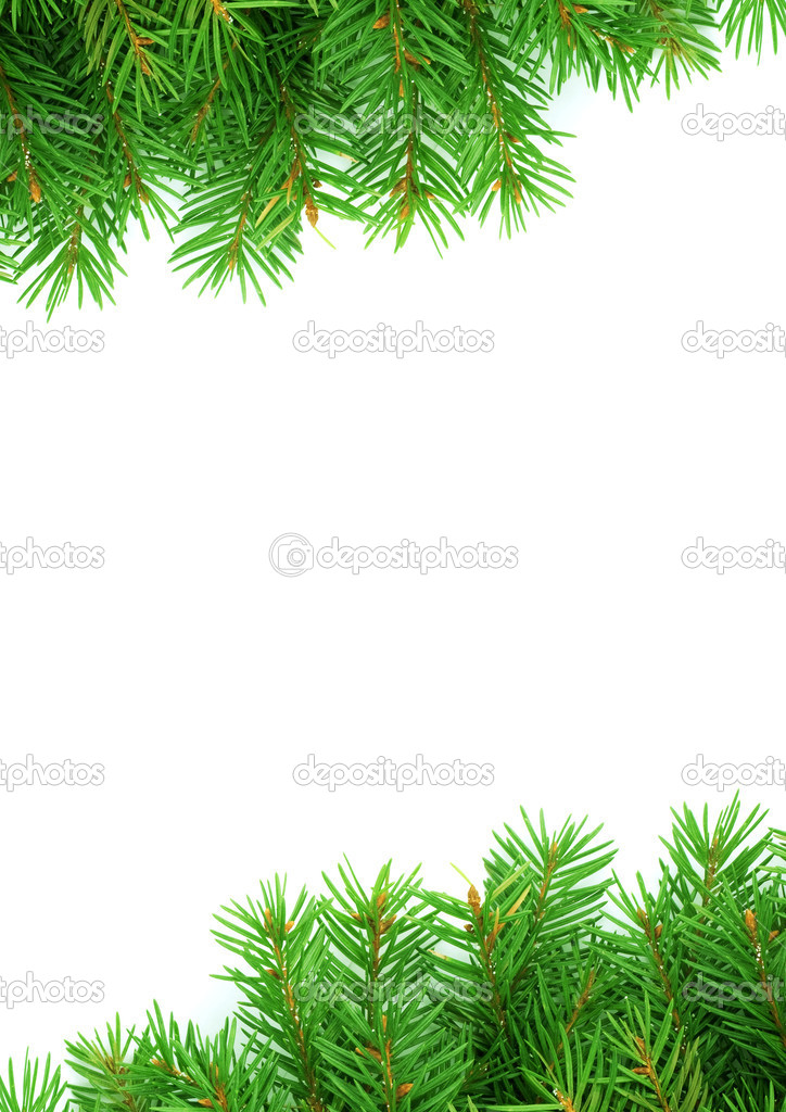 Christmas green framework isolated on white background — Stock Photo #2364927