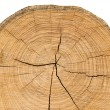 Stock Photo: Wooden split cut.