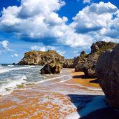 Wild seashore. — Stock Photo