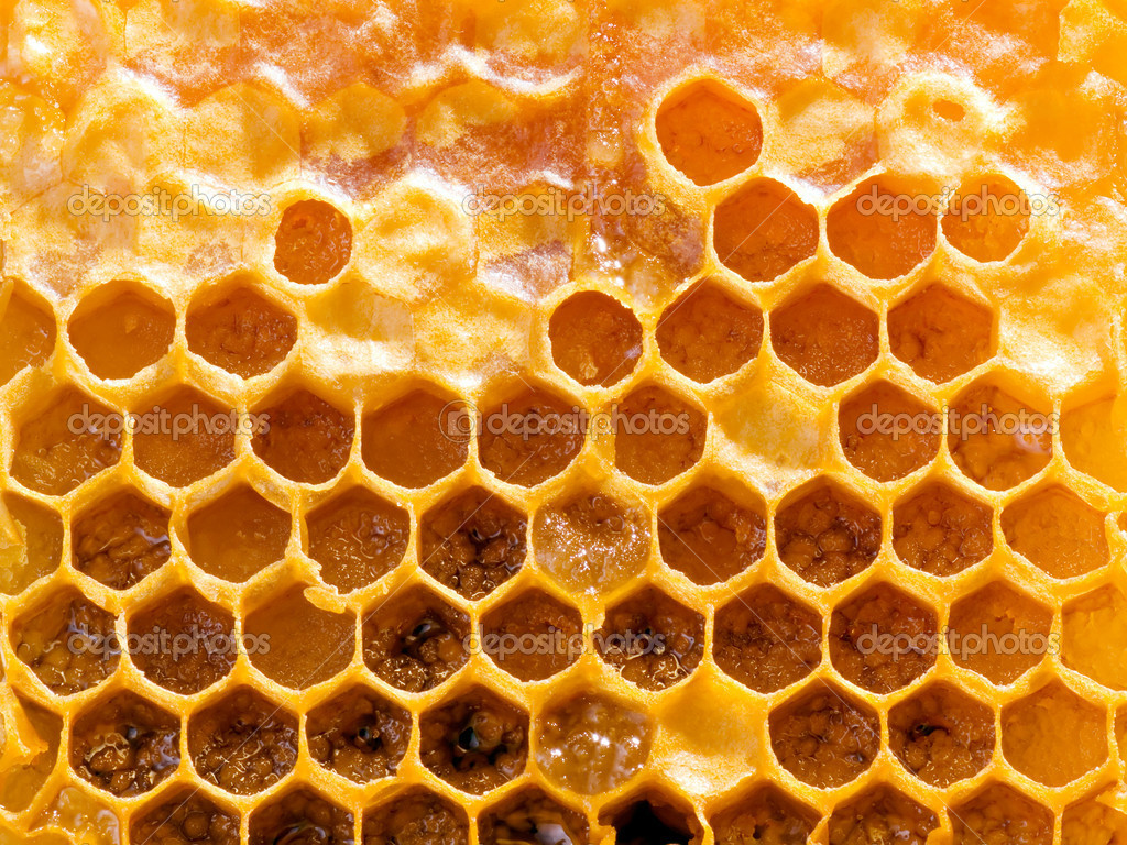 Texture honeycomb background. — Stock Photo #1110298