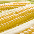 Royalty-Free Stock Photo: Corn.