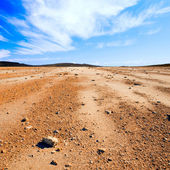 Stony desert. — Stock Photo
