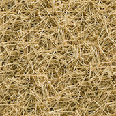 Hay seamless background. — Stock Photo