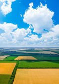 Fields - view from above. — Stock Photo