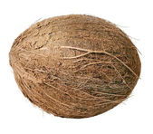 Coconut. — Stock Photo