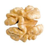Walnut. — Stock Photo