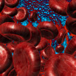 Red cells. - Stock Photo
