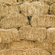 Hay. — Stock Photo