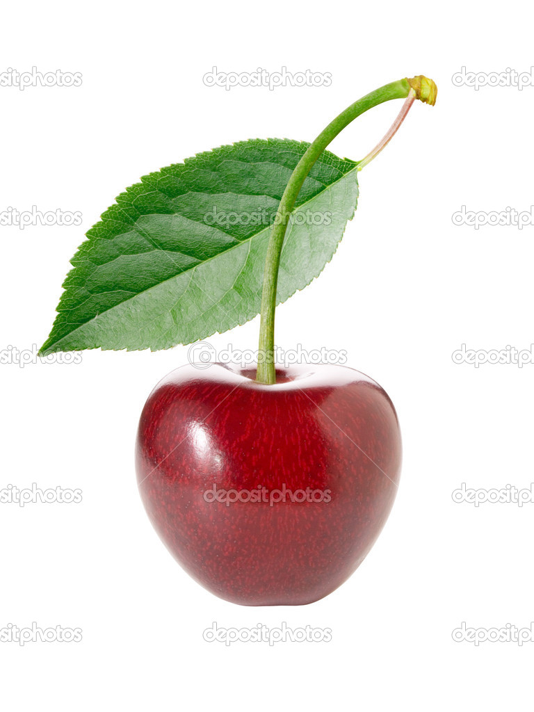 Cherry with leaf on white background (isolated). — Stock Photo #1205871