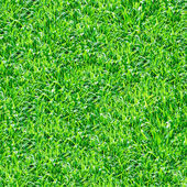 Green grass seamless pattern. — Stock Photo