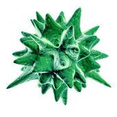 Green virus on white background (isolated). — Stock Photo