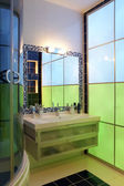 Chamelеon bathroom — Stockfoto