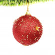 Christmas decoration — Stock Photo #1152911