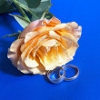 Rose and wedding rings — Stock Photo