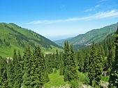 Mountain landscape, Central Asia, — Stock Photo
