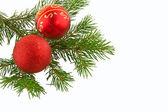 Julgran gran med röda frökapslar — Stockfoto