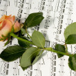 Royalty-Free Stock Photo: Rose over musical note