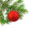 Christmas fur-tree  with boll — Stock Photo