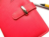 Red copybook with pen — 图库照片