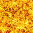 Royalty-Free Stock Photo: Fire photo on a black background