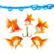 Five small fishes at a hook - Stock Photo