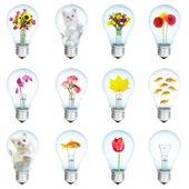 Twelve electric bulbs — Stock Photo