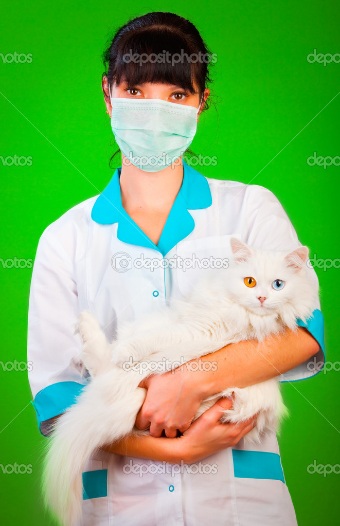 Animal healthcare on a green background — Stock Photo #1189355