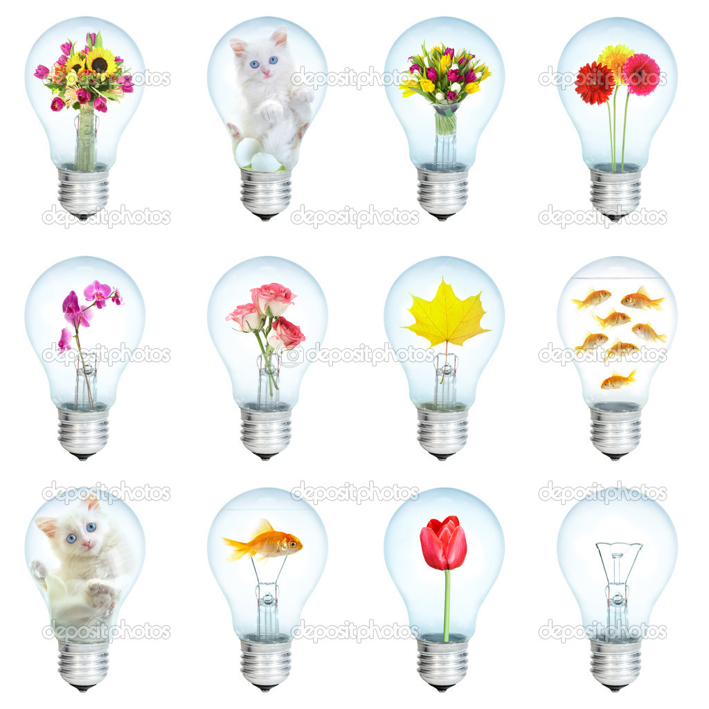 Twelve electric bulbs on a white background — Stock Photo #1189369