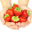 Strawberry in hands — Stockfoto