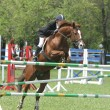Show jumping — Stock Photo #1317663